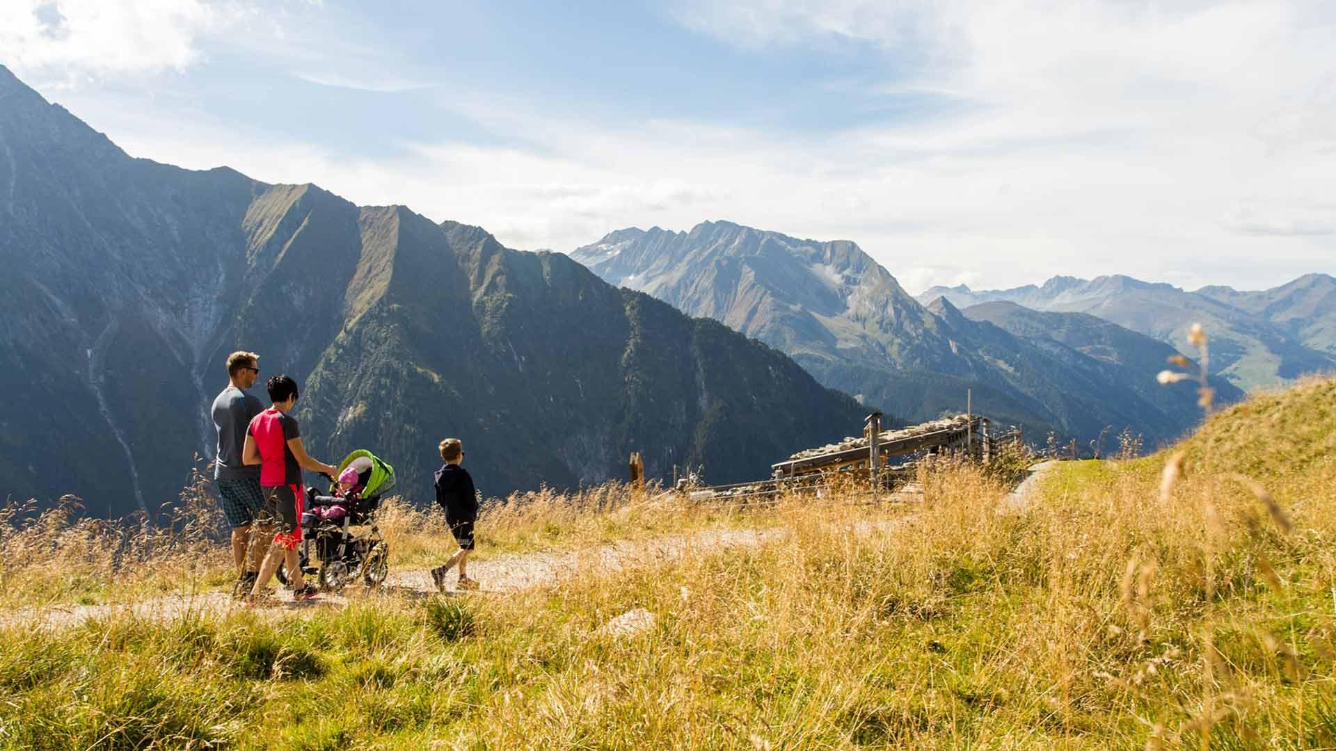 brixnerhof im zillertal: zillertal, berge, ausblick